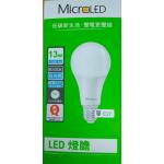 13W LED Light Bulb