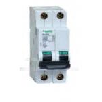 斷路器 漏電斷路器(雙極) Schneider MGC68N C10A
